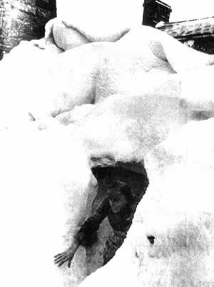 1947-1-21 The coldest winter in Europe has experienced since 1883
